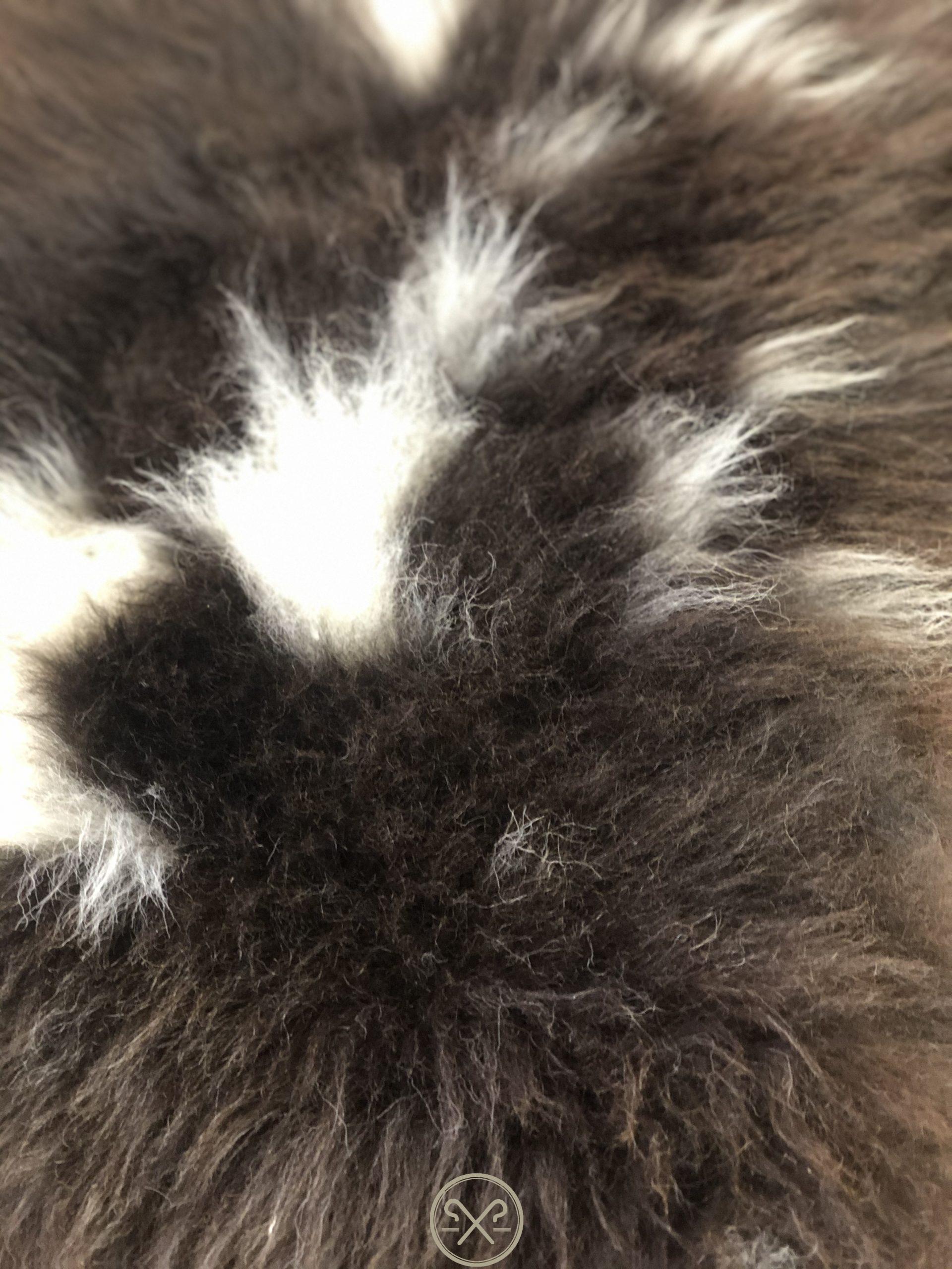 Black Brown and White Natural Jacob Sheepskin Rug