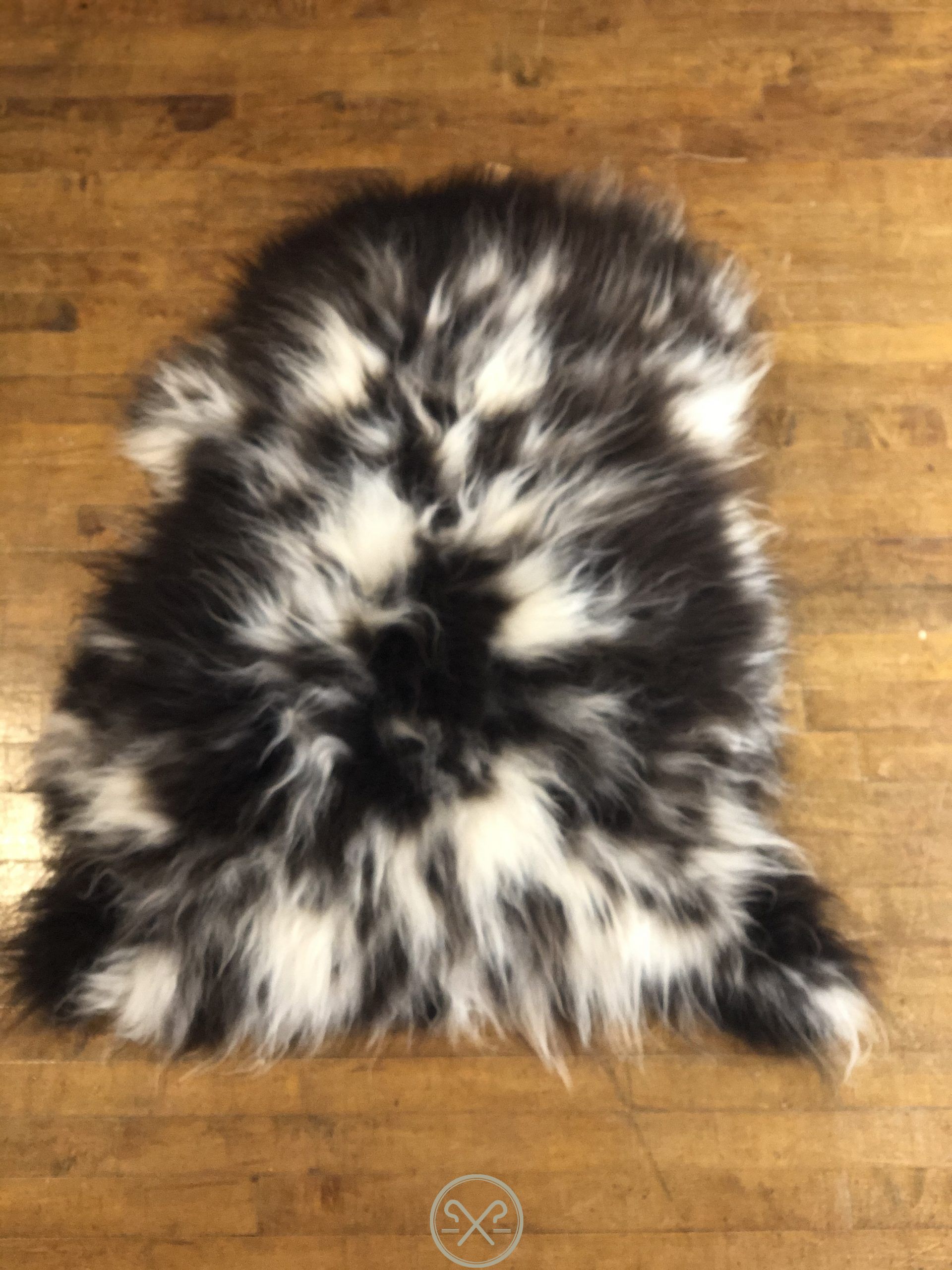 Rare Black and White Jacob's breed natural thick pile Sheepskin rug.